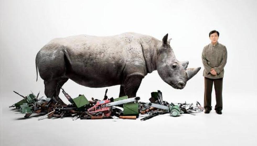 Jackie Chan joins anti-poaching drive, debunks rhino myths