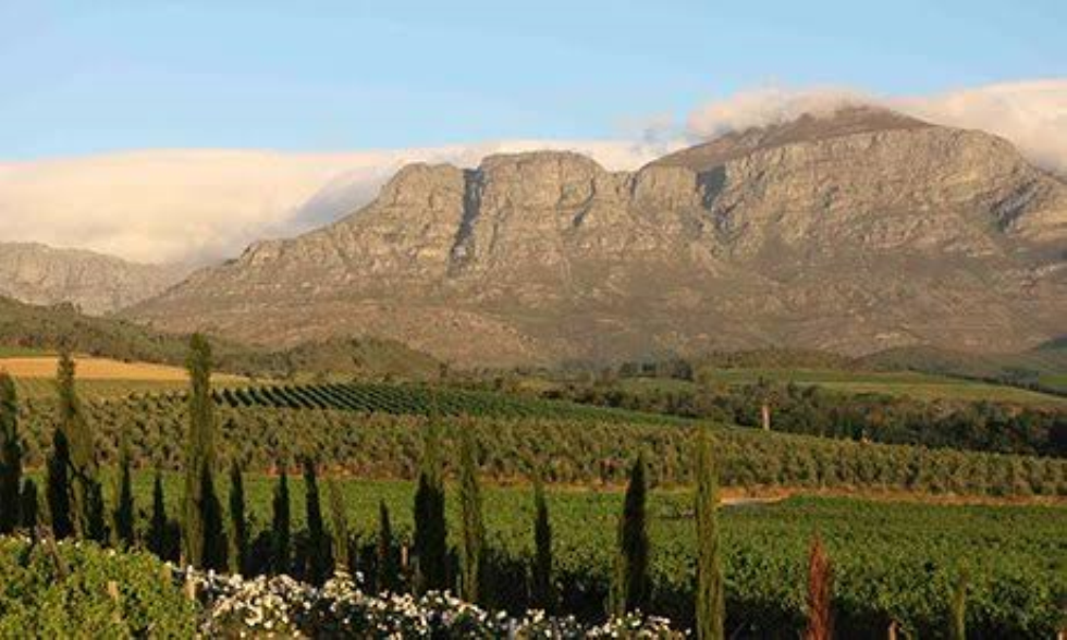 Swellendam named SA's top eco-friendly destination: Here's why