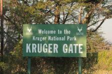 imm_3763_Kruger-National-Parks.jpg